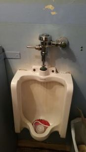 before urinal